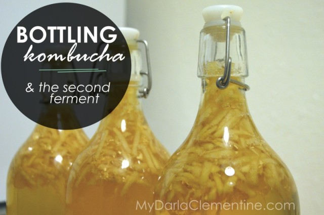 Bottling Kombucha and the Second Ferment (with video tutorial). How to brew booch & customize flavor and carbonation. By My Darla Clementine.